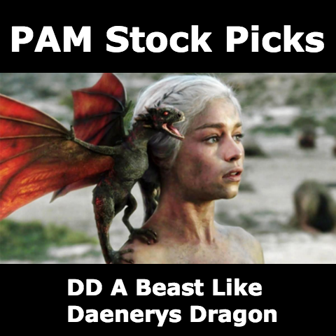 pam-stock-picks-double-dragon